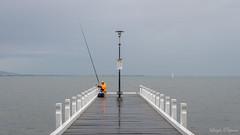 (Laszlo Papinot) Tags: fff geelong beach foreshore man pier jetti fisherman rod water bay coriobay boat sailboat