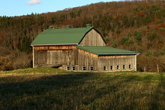 Sun Going Down (Diane Marshman) Tags: barn farm nonworking building green metal roof weathered brown tan black side barnboards boards wood windows mountain scene scenic field hill autumn fall pa pennsylvania state nature land rural country grass foliage trees pines ramp