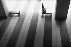 F_MG_7747-BW-Canon 6D2-Canon 16-35mm-May Lee 廖藹淳 (May-margy) Tags: maymargy 黑白 人像 背影 逆光 剪影 涼椅 走廊 磁磚 地坪 幾何構圖 點人 街拍 像條造型與光影 天馬行空鏡頭的異想世界想世界 心象意象與影像 新北市 台灣 中華民國 台灣攝影師 bw portrait viewfromback backlighting silhouette benched corridor tiledfloor pavement humaningeometry humanelement streetviewphotography mylensandmyimagination linesformsandlightandshadow naturalcoincidencethrumylens taiwanphotographer newtaipeicity taiwan repofchina fmg7747bw canon6d2 canon1635mm maylee廖藹淳 臉譜 facesinplaces