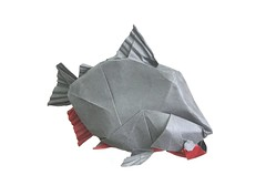 Pacu (folding~well) Tags: origami paper folding monster fish freshwater