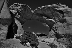 Afternoon Sunlight on the Broken Arch (Black & White, Arches National Park) (thor_mark ) Tags: archesnationalpark azimuth50 blackwhite blueskies blueskieswithclouds brokenarch canyonlands capturenx2edited centralcanyonlands colorefexpro coloradoplateau day7 desert desertlandscape desertmountainlandscape desertplantlife desertvegetation highdesert intermountainwest junipertrees landscape largebushes layersofrock lookingne naturalarch naturalarches nature nikond800e outside partlysunny portalview project365 rockformations sandduneandbrokenarchtrail sandstonearch sandstonefin sunny trees utahhighdesert utahnationalparks2017 ut unitedstates