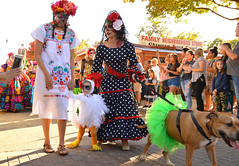 Walking with a duck and a dog (radargeek) Tags: parade procession dayofthedead plazadistrict okc oklahomacity 2018 october catrina festival facepaint duck dog everythinggoesdancestudio shootingtheshooter