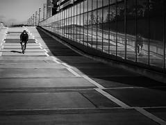 reflection of a cyclist (heinzkren) Tags: schwarzweis blackandwhite biancoetnero noiretblanch monochrome street streetphotography reflection reflexion spiegelung architektur architecture biker cyclist sport radfahrer wien vienna austria panasonic lumix