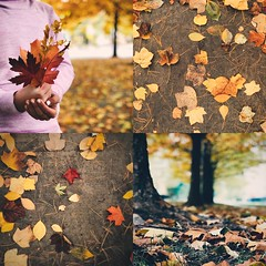 :: a shimmer of bronze in the autumn light :: ({april h}) Tags: mosaic autumn copper gold bronze leaves fall seasons collage