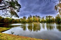 Autumn sky (Tobi_2008) Tags: herbst autumn himmel sky teich pond spiegelung reflection sachsen saxony deutschland germany allemagne germania