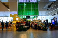 DSCF5540 (Tang0126) Tags: fujifilmxh1 fujifilmxf1855mmf284r thenetherlands 荷蘭 amsterdam 阿姆斯特丹 史基浦機場 schipholairport