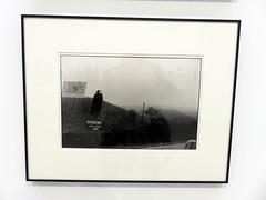 VALENCIA. BOMBAS GENS. 2.019. 14 (joseluisgildela) Tags: valencia valenciacaníbal bombasgens exposiciones fotos