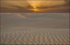 Pinceladas del viento. (antoniocamero21) Tags: paisaje color foto sony desierto dunas arena cielo atardecer sol nubes douz túnez dorado