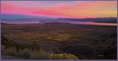1035. Mono Lake 57 - Mono Lake View 24 - At Mono Lake basin 7 (Oscardaman) Tags: 1035 mono lake 57 view 24 at basin 7 forinquiresaboutanyofmyphotos pleaseemailmeatoscarwitzgmailcom