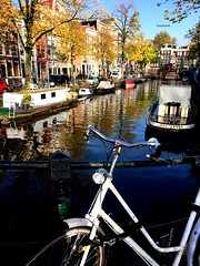 Big city, you're so pretty (Tommysfotografie) Tags: city travel bridge november autumn trees houses cidade holland reflection tree netherlands dutch amsterdam bike bicycle boats photography canal photo novembre cityscape capital hauptstadt herbst herfst picture nederland thenetherlands houseboat tourist arbor stadt pont kanal traveling brug brücke reflexion arbre paysbas spiegelung fahrrad stad bigcity fiets bru noordholland citywalk ambre niederlande gracht behindthelens spiegelgracht biciclette spiegeling capitalcity woonboot reflectionshot autumnfall grachtenhuizen traditionalhouses reflectionphoto reflectionpicture reflectionphotography wohnboot holande reflectionperfection reflectionview wassertropfen waterdruppels raindrops waterdrops