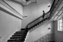 registrar general's building (gro57074@bigpond.net.au) Tags: bwworldwithnikon registrargeneral'sbuilding sydneylivingmuseums sydneyopen november2019 guyclift nikkor 1424mmf28 d850 nikon candid man inside sydney monochromatic monotone monochrome mono bw staircase blackwhite