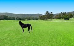 1451 Upper Colo Road, Upper Colo NSW