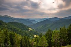 Sünte Deresi Boyunca Yaylalar (Highlands along Sünte Creek) (SBastan) Tags: anatolia anadolu asia asiaminor ağaçlar beauty bulutlar blacksea clouds cloud calmandpeace cloudyday doğa doğukaradeniz dağ dağmanzarası environment easternblacksea forest gezi gorgeous green gökyüzü harika huzur highlands karadeniz kuzeydoğuanadolu kalınçam kalınçammahallesi kalınçamköyü manzara mountain mountainlandscape mountains nature nikond610 northeastanatolia orman photography perfect plants perspective serhatbaştan sbastan splendid sunset sky seyahat türkiyeyiseviyorum türkiye turkey travel trees tonya trabzon tree yeşil yayla wideangle