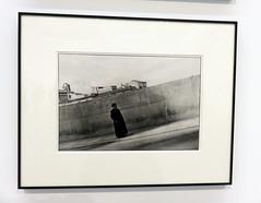 VALENCIA. BOMBAS GENS. 2.019. 15 (joseluisgildela) Tags: valencia valenciacaníbal bombasgens exposiciones fotos