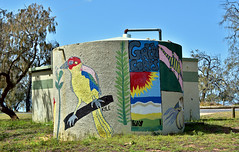 Water tank [Coonarr Beach,Bundaberg] (Dreaming of the Sea) Tags: 2019 nikkor18200mm nikond5500 nikkor bluesky bundaberg queensland australia coonarrbeach watertank trees sheoak streetart fence greengrass fantasticmonday