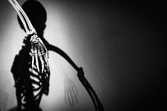 Bones (nicolas-7878) Tags: exposition os flickrfriday bones flickrfridaybones museum squelette main bras shadow ombre doigts nb bw nikond5500 nikon radius ulna carpe métacarpe phalange