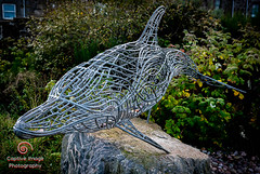 Wireframe Dolphin - Andy Scott (_Captive Image_) Tags: captiveimagephotography scotland dolphin traveldestinations stonehavenbanksy metalwork stonehaven socialhistory sea sculpture beach boardwalk outdoors cultures andyscott uk concepts