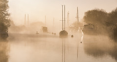 Swans on the River Frome (Nick L) Tags: riverscape landscape riverfrome frome wareham dorset dorsetmisty misty yachts boat river dawnlight dawn uk heartshape canon eos 5d