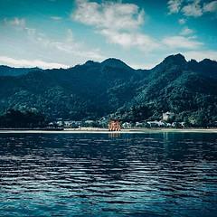 Itsukushima, Japan #itsukushima #shrine #island #sea #landscapephotography (Murat Guneri) Tags: ifttt instagram itsukushima japan shrine island sea landscapephotography