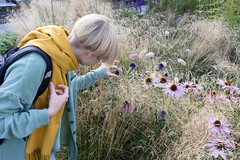 a young girl sees the flowers (straleglans) Tags: woman grass people nature young summer walking park field outdoors forest green happiness outside spring