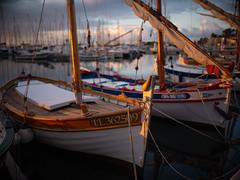 DIDX8978--40mm F1.4 DG HSM - A--1-750 s à f - 1,4--ISO 100 (Did From Mars) Tags: bandol southoffrance suddelafrance bateau pêcheur pointu fishermansboat