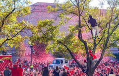 2019.11.02 Washington Nationals Victory Parade, Washington, DC USA 306 61041