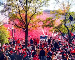 2019.11.02 Washington Nationals Victory Parade, Washington, DC USA 306 61052