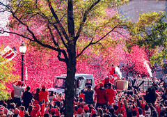 2019.11.02 Washington Nationals Victory Parade, Washington, DC USA 306 61056