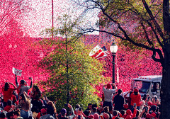 2019.11.02 Washington Nationals Victory Parade, Washington, DC USA 306 61057