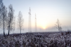 Morning frost and mists over meadows at dawn. (ivan_volchek) Tags: autumn beautiful bright climate cloud cold color dawn day ecology environment field flora fresh frost frosty frozen grass heaven hoarfrost illumination land landscape light majestic meadow morning natural nature outdoor park plant rural scenery season sky spring summer sun sunlight sunny sunrise sunset sunshine travel weather wildlife winter