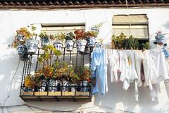 Granada (Niall Corbet) Tags: spain andalusia andalucia granada albaicin window washingline