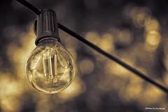 Lighting up the bokeh....HSS!!! (Joe Hengel) Tags: lightingupthebokeh light wire bokeh salemma massachusetts ma hss happyslidersunday sunday slidersunday slider slide sepia texture
