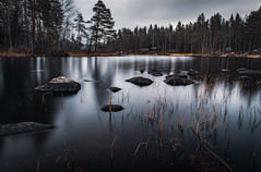 Grey (mabuli90) Tags: finland lake water longexposure forest tree sky cloudy grass rock autumn winter nature