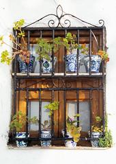 Granada (Niall Corbet) Tags: spain andalusia andalucia granada albaicin window