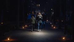 Uppsala, November 2, 2019 (Ulf Bodin) Tags: uppsala november sverige canonrf85mmf12lusm canoneosr allahelgonsdag höst autumn kyrkogård sweden outdoor allhelgonahelg gamlakyrkogården cemetery allhelgonadagen uppsalalän
