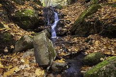 Natures Museum (Kevin Tataryn) Tags: nature water waterfall rocks leaves leaf fall autumn stream gatineaupark trail landscape ncc nationalcapitalcommission ottawa quebec canada nikon d500 1755