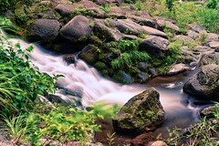 Everything changes (View from the rabbit hutch) Tags: stream longexposure silky river falls green rock bokeh flow