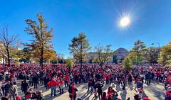 2019.11.02 Washington Nationals Victory Parade, Washington, DC USA 306 61027