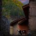 Mestia in Svaneti - Georgia
