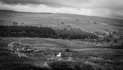 Holwick . (wayman2011) Tags: colinhart fujifilm35mmf2 fujifilmxt1 lightroom5 wayman2011 bwlandscapes mono rural pennines dales teesdale holwick countydurham uk
