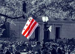 2019.11.02 Washington Nationals Victory Parade, Washington, DC USA 306 61013