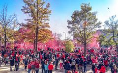 2019.11.02 Washington Nationals Victory Parade, Washington, DC USA 306 61058