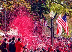 2019.11.02 Washington Nationals Victory Parade, Washington, DC USA 306 61067