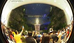 Jewel, a different perspective... (Jonathan E.) Tags: sg singapore jewel fountain fisheye olympus meike changi terminal1 em10mkiii