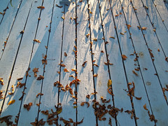 Morning textures (LivGreen) Tags: deck autumn leaves texture dew blue paint boards morning