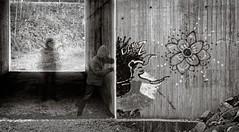 Danz, who's looking (Geir Bakken) Tags: art artisitc analog analogphotography film filmisnotdead filmphotography filmcamera filmisalive filminotdead 120film 120 mediumformat mamiya mamiyarb67 ilford ilforddelta panorama stitchedpanorama panoramic blackandwhite bw ghost