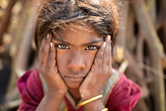 India, Gypsy girl in Kutch (Dietmar Temps) Tags: ahir beautiful beauty face female asian costume asia culture attractive ethnic gypsy gujarat ethnicity beautifulgirl bhuj poverty portrait people india person pretty indian poor jewelry nomads rajasthan nomadic rannofkutch harijan megwal rural village traditional young tribe saree sari thardesert 35mm