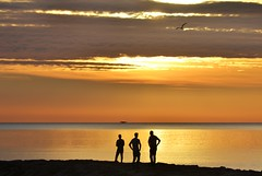 Flying a drone - Volando un drone (En memoria de Zarpazos, mi valiente y mimoso tigre) Tags: sea seascape sunrise beach drone silhouette skyfire skyred seagull amanecer alba playa spiaggia siluetas nikon cielorojizo cielorosso