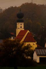 Beutelsbach (sebastianwerba) Tags: beutelsbach goppenberg niederbayern bayern landkreispassau 03112019 werba sebastianwerba sonntag sonntagsspaziergang herbst goldenderherbst natur freizeit erholung sport spaziergang wandern naturerleben nebel herbstnebel