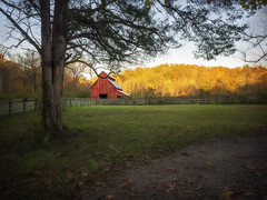 Rutledge Red Barn (Donna Tomlin) Tags: olympusem1 rutledgefalls tennesseephotographer redbarn eveninglight autumn